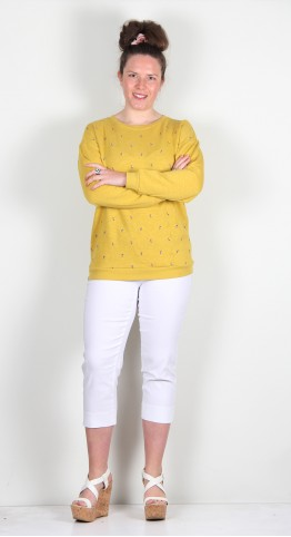 Brakeburn Embroidered Sweatshirt Yellow
