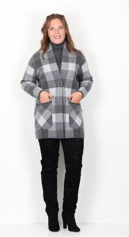 Foil Great Scott Coat Silver Check