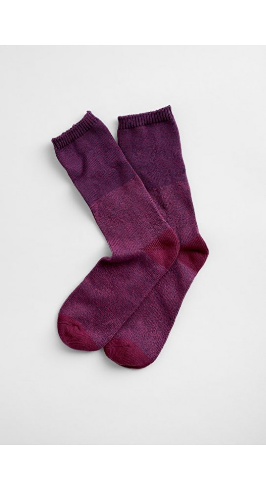 Seasalt Clothing Bloomin Good Socks Clove